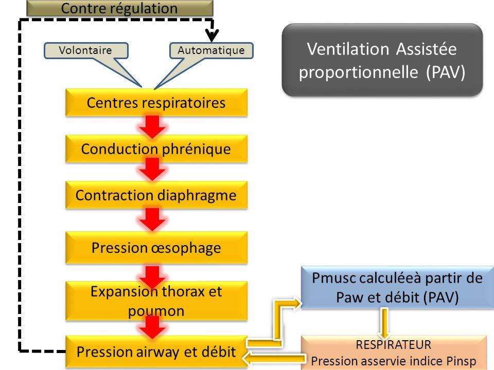 Ventilation Assistée proportionnelle (PAV)