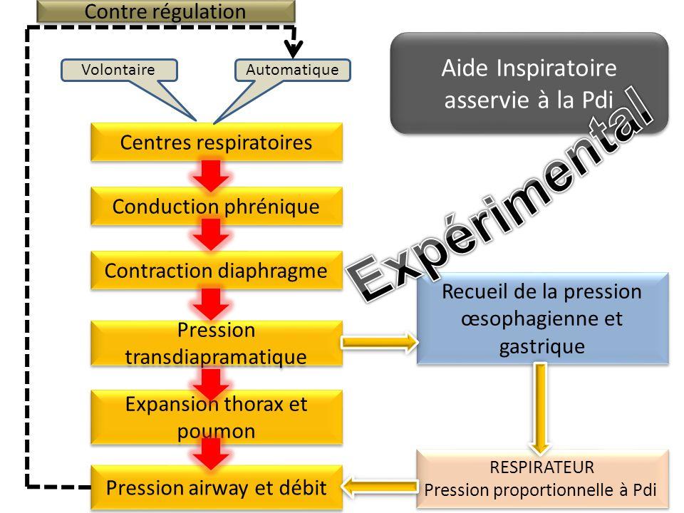 Expérimental Aide Inspiratoire asservie à la Pdi Contre régulation