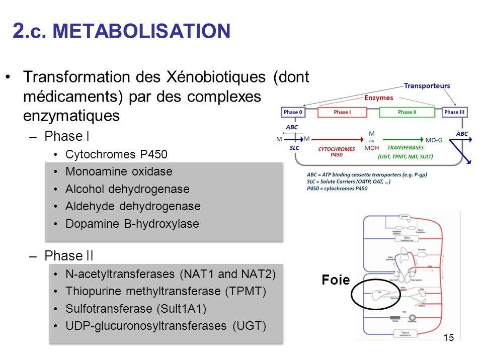 2.c. METABOLISATION Transformation des Xénobiotiques (dont médicaments) par des complexes enzymatiques.