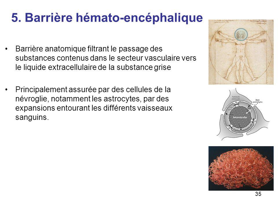 5. Barrière hémato-encéphalique