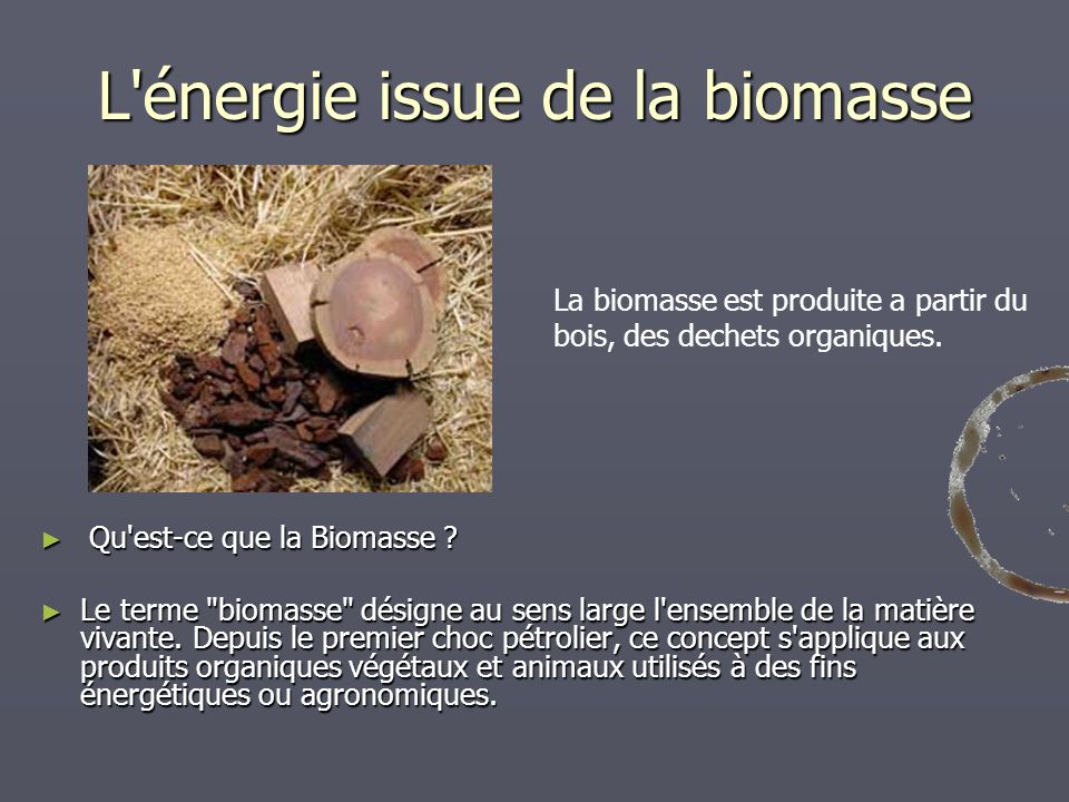 L énergie issue de la biomasse