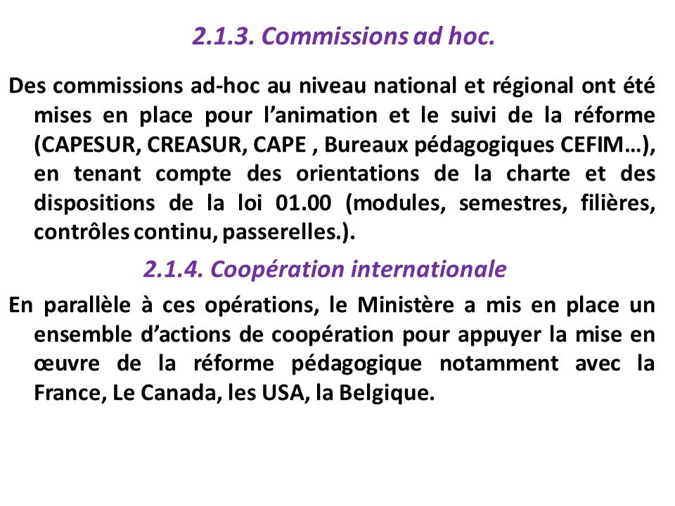 2.1.3. Commissions ad hoc.