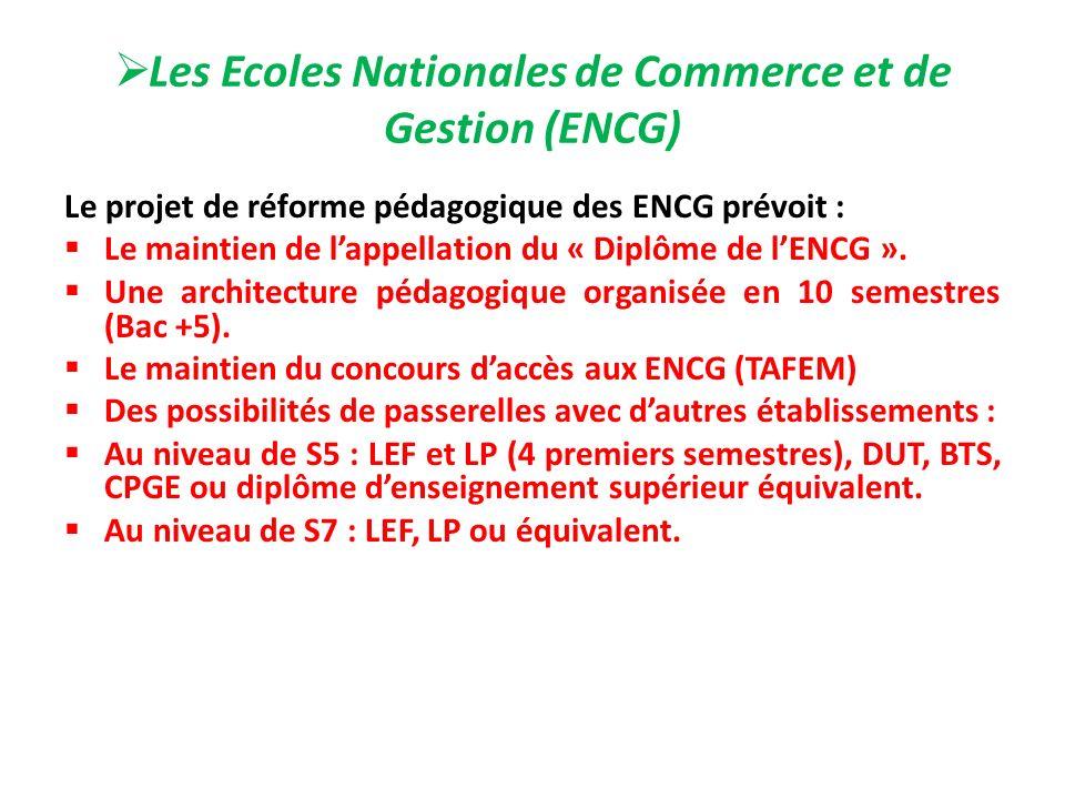 Les Ecoles Nationales de Commerce et de Gestion (ENCG)