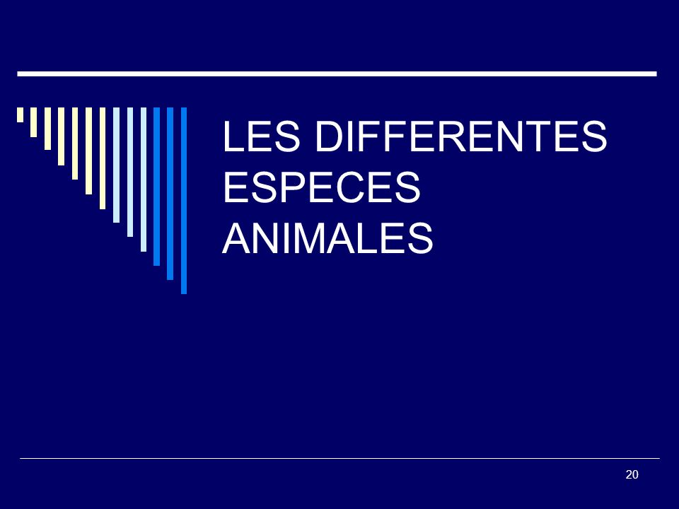 LES DIFFERENTES ESPECES ANIMALES