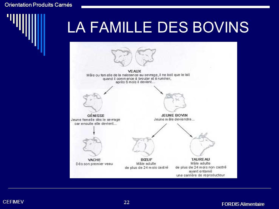 LA FAMILLE DES BOVINS CEFIMEV FORDIS Alimentaire