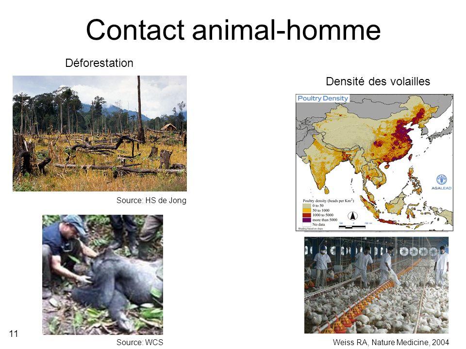 Contact animal-homme Déforestation Densité des volailles