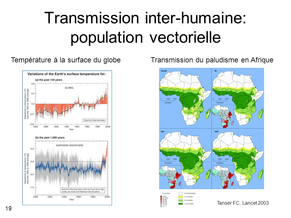 Transmission inter-humaine: population vectorielle