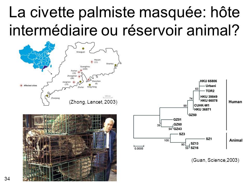 La civette palmiste masquée: hôte intermédiaire ou réservoir animal