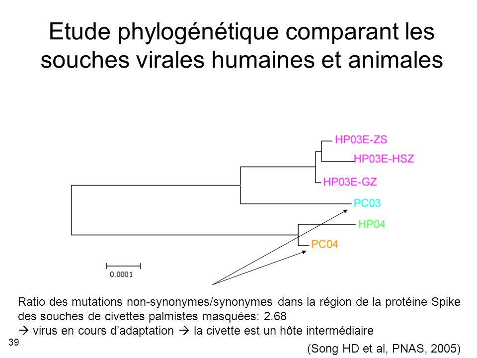 Etude phylogénétique comparant les