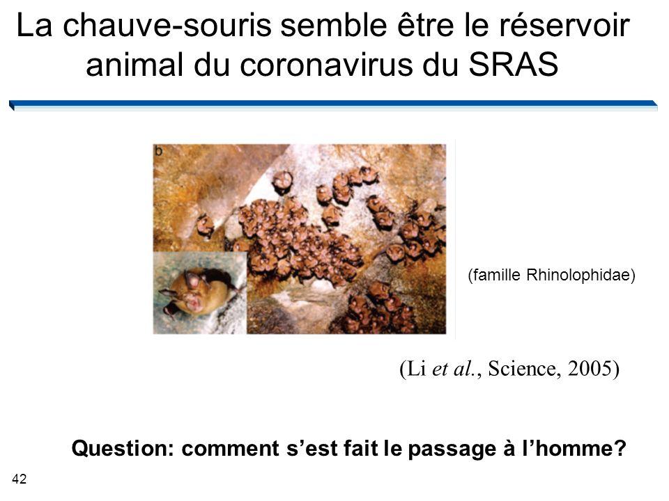 La chauve-souris semble être le réservoir animal du coronavirus du SRAS