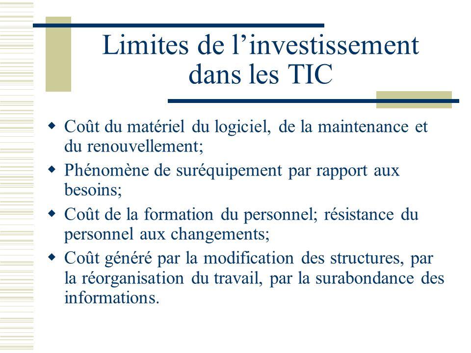 Limites de l'investissement dans les TIC