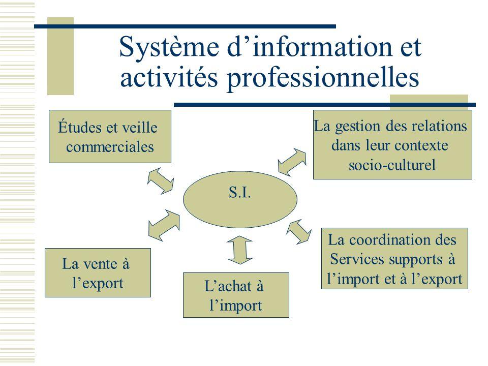 Système d'information et activités professionnelles