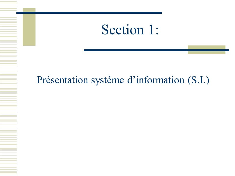 Présentation système d'information (S.I.)