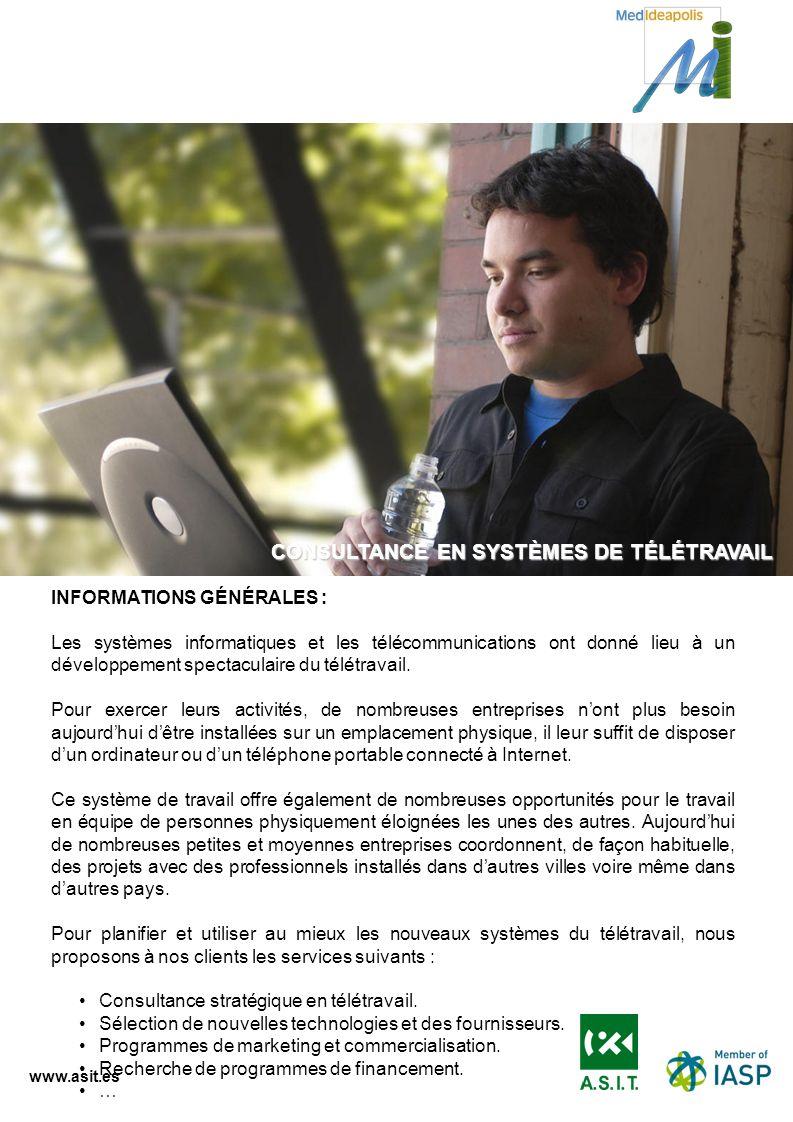 CONSULTANCE EN SYSTÈMES DE TÉLÉTRAVAIL