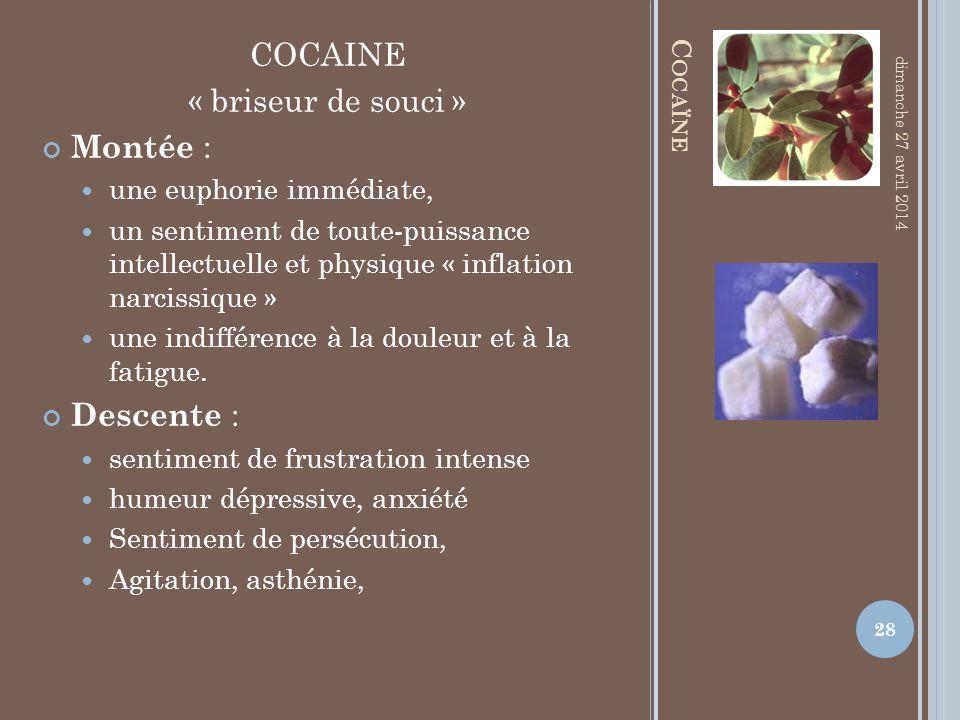 COCAINE « briseur de souci » Montée : Descente :