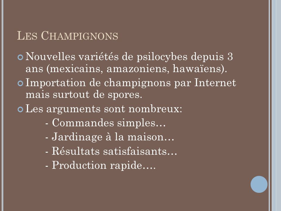 Les Champignons Nouvelles variétés de psilocybes depuis 3 ans (mexicains, amazoniens, hawaïens).