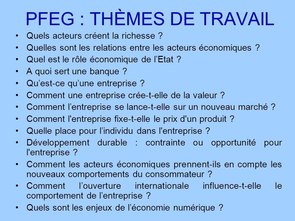 PFEG : THÈMES DE TRAVAIL