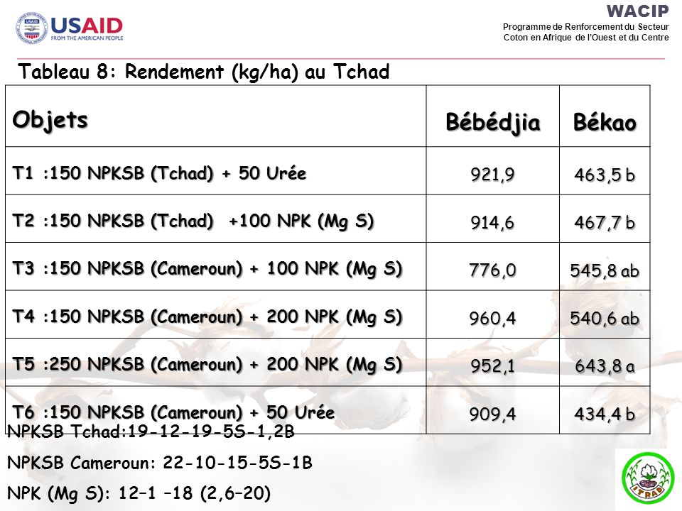 Békao Objets Bébédjia Tableau 8: Rendement (kg/ha) au Tchad WACIP