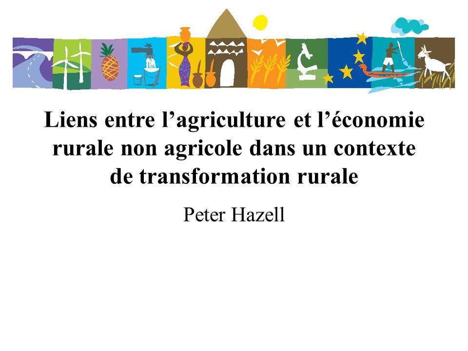 Liens entre l'agriculture et l'économie rurale non agricole dans un contexte de transformation rurale
