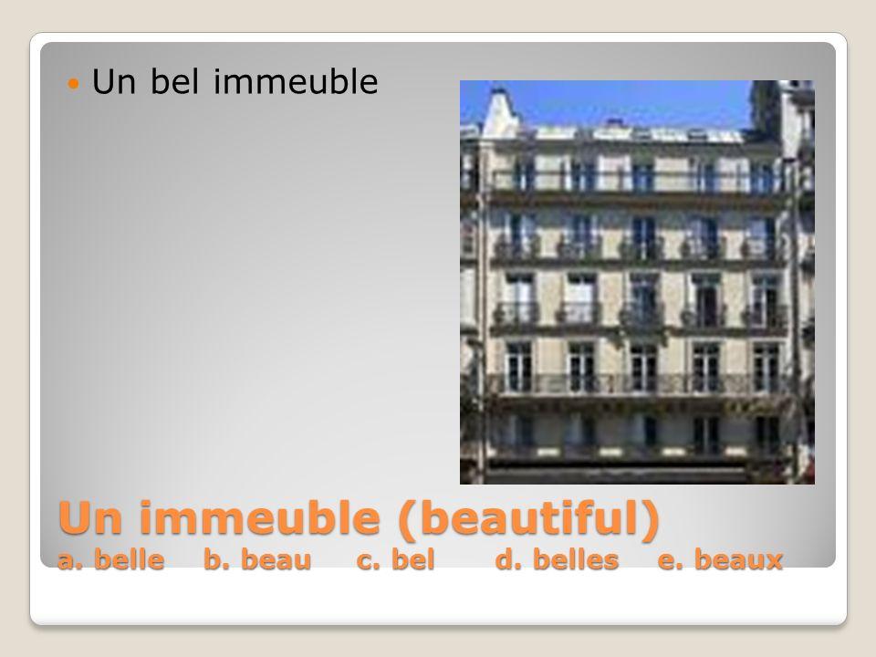Un immeuble (beautiful) a. belle b. beau c. bel d. belles e. beaux