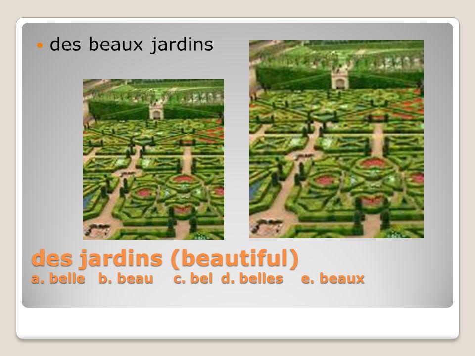des jardins (beautiful) a. belle b. beau c. bel d. belles e. beaux