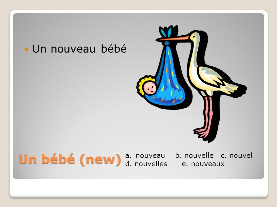 Un bébé (new) Un nouveau bébé nouveau b. nouvelle c. nouvel
