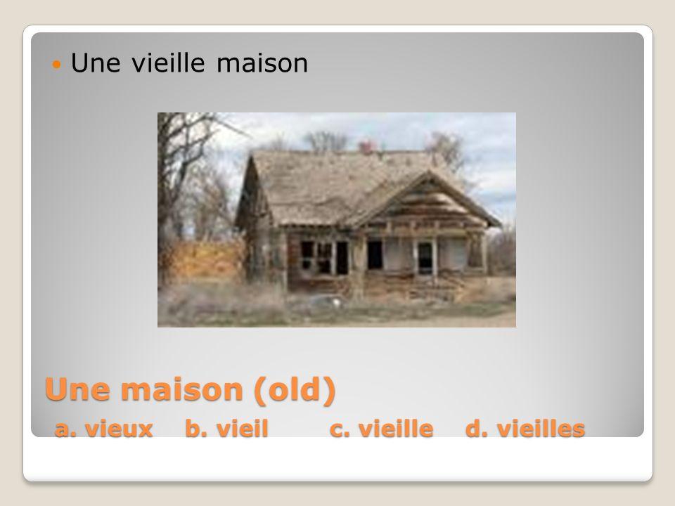 Une maison (old) a. vieux b. vieil c. vieille d. vieilles