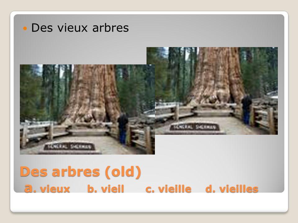 Des arbres (old) a. vieux b. vieil c. vieille d. vieilles