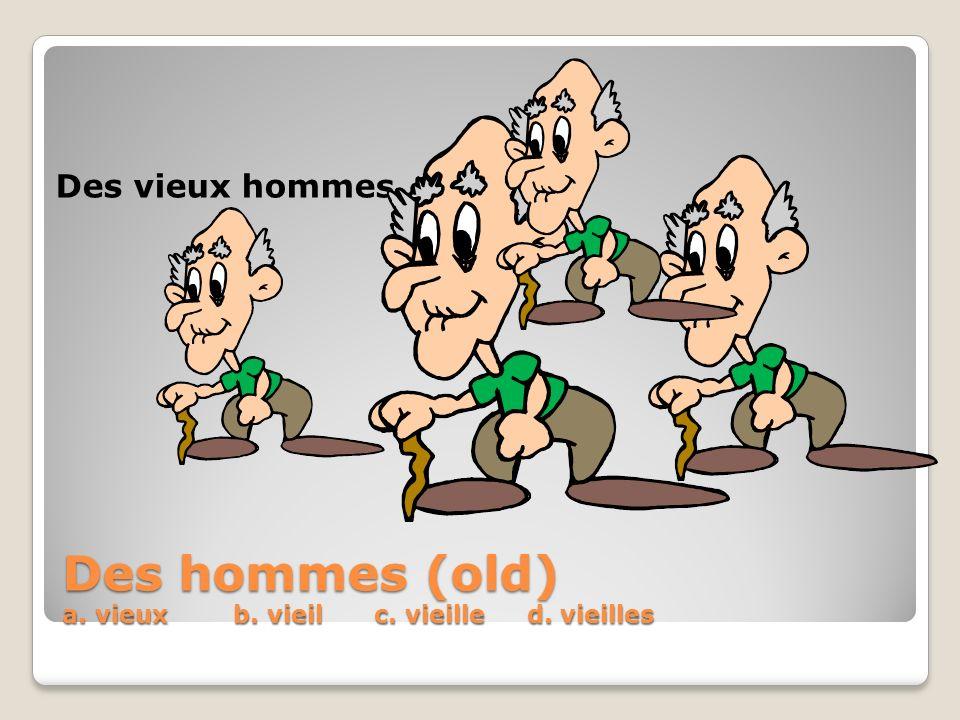 Des hommes (old) a. vieux b. vieil c. vieille d. vieilles