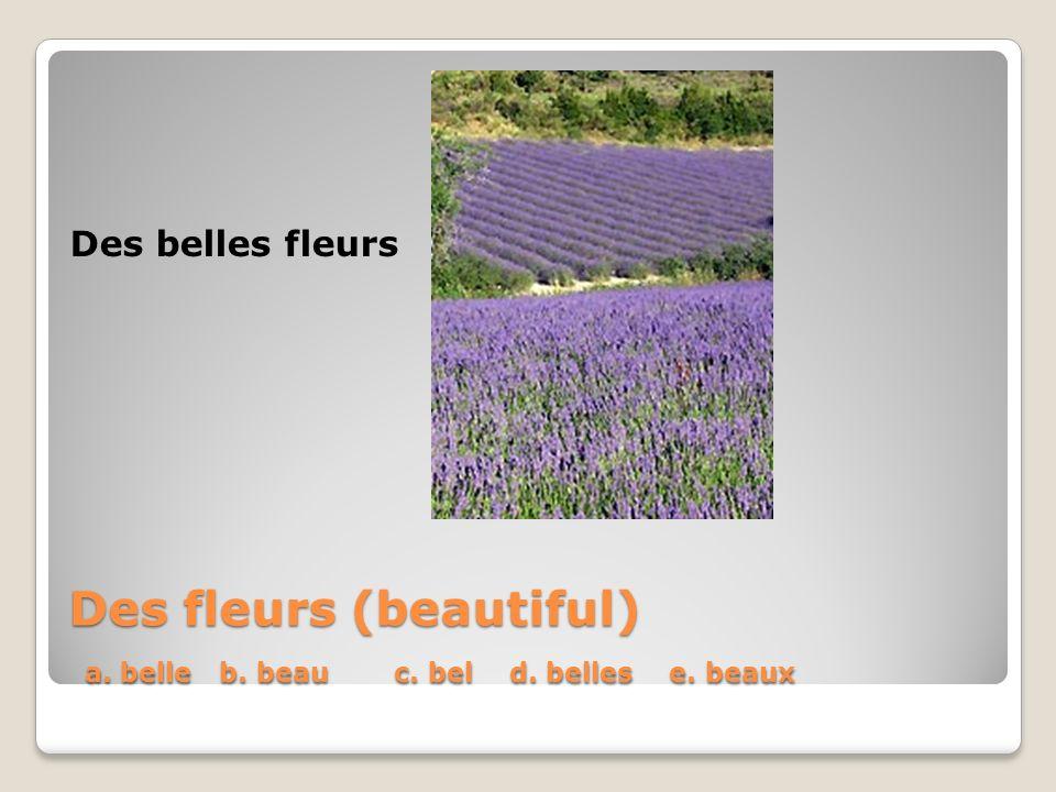 Des fleurs (beautiful) a. belle b. beau c. bel d. belles e. beaux