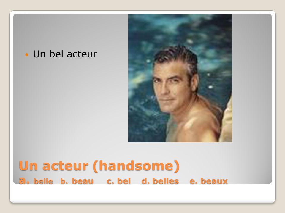 Un acteur (handsome) a. belle b. beau c. bel d. belles e. beaux
