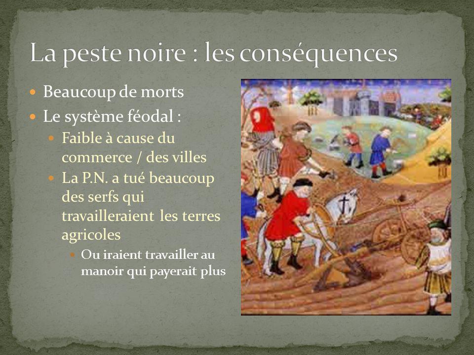 La peste noire : les conséquences