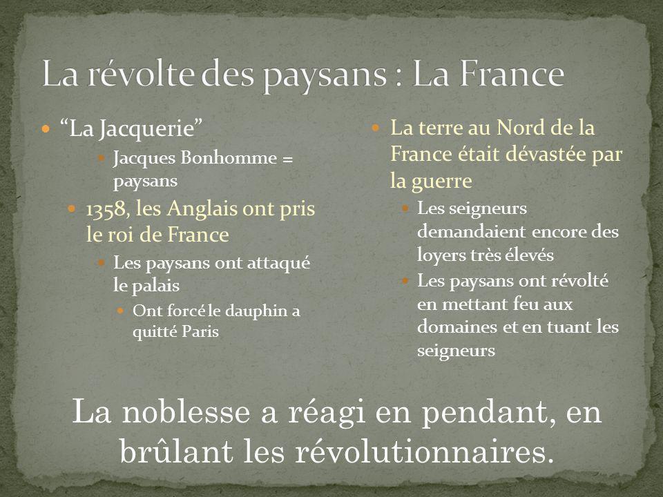La révolte des paysans : La France