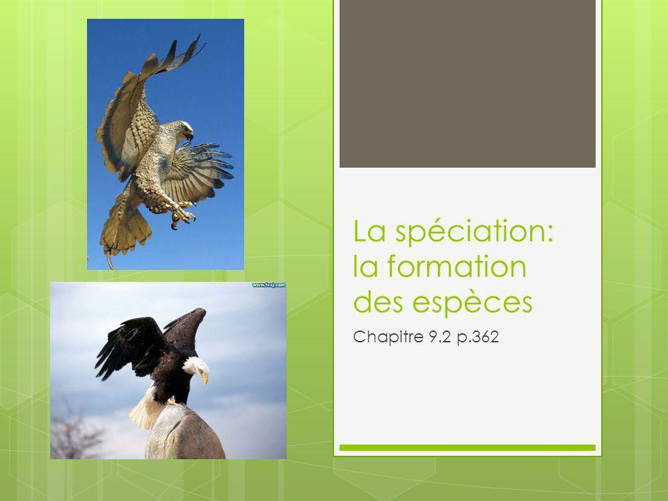 La spéciation: la formation des espèces