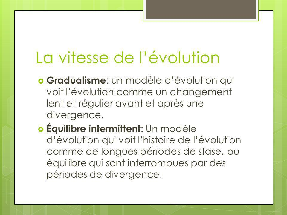 La vitesse de l'évolution