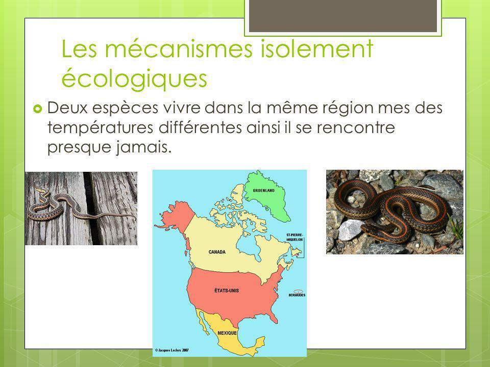 Les mécanismes isolement écologiques