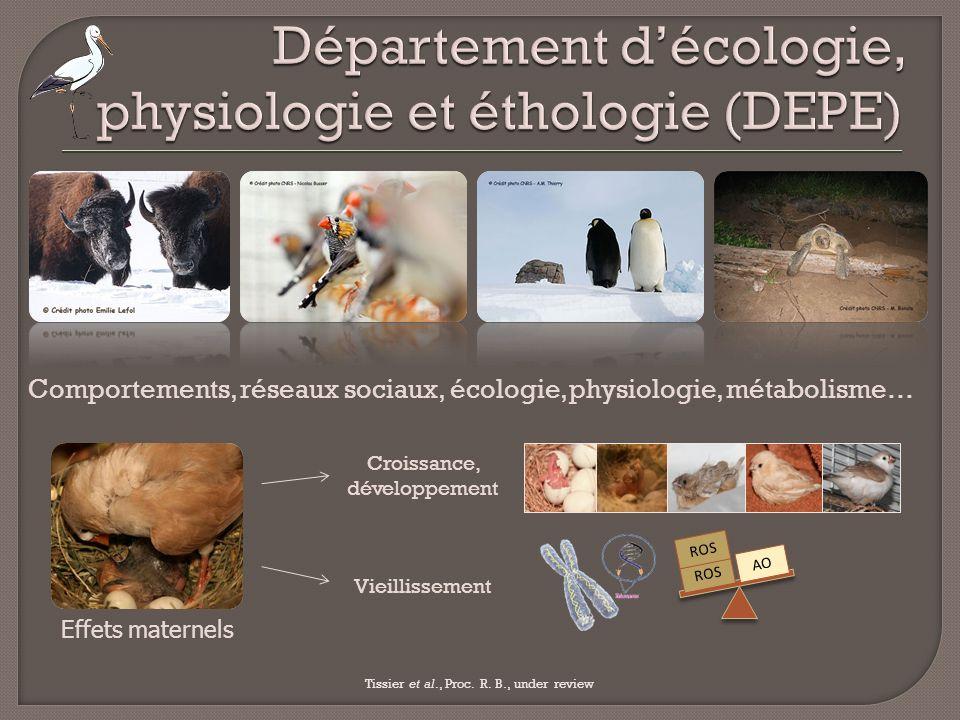 Département d'écologie, physiologie et éthologie (DEPE)