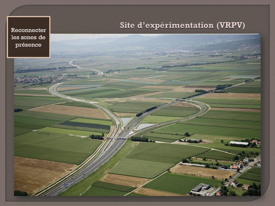 Site d'expérimentation (VRPV)