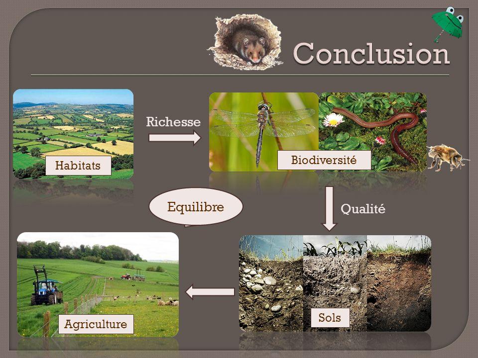 Conclusion Richesse Equilibre Qualité Biodiversité Habitats Sols
