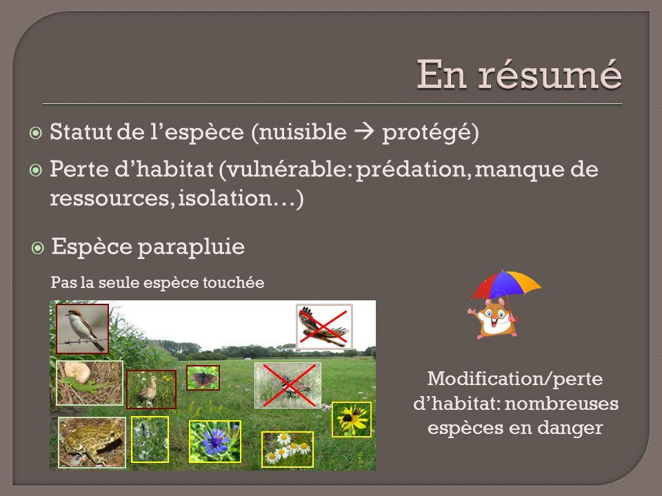Modification/perte d'habitat: nombreuses espèces en danger