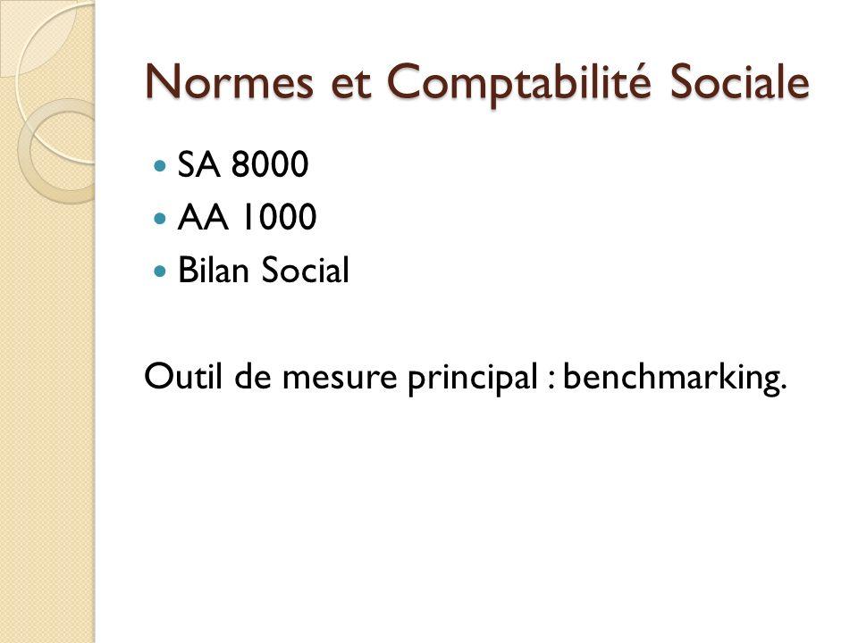 Normes et Comptabilité Sociale
