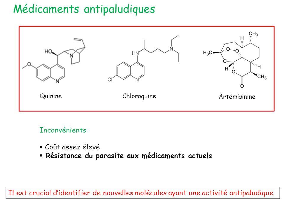 Médicaments antipaludiques
