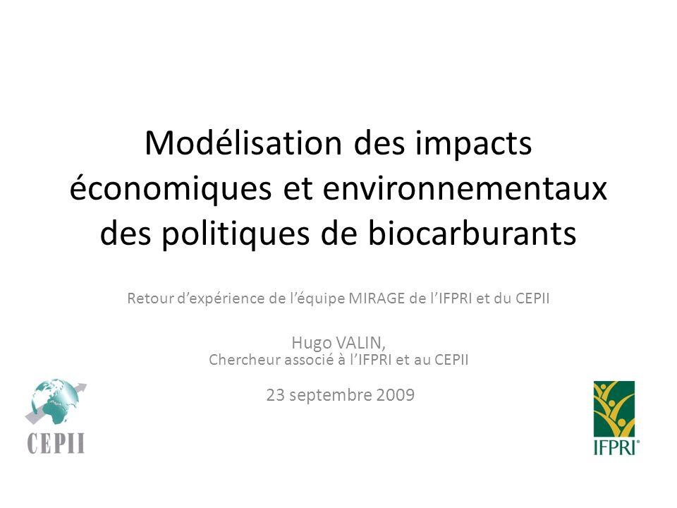 Modélisation des impacts économiques et environnementaux des politiques de biocarburants