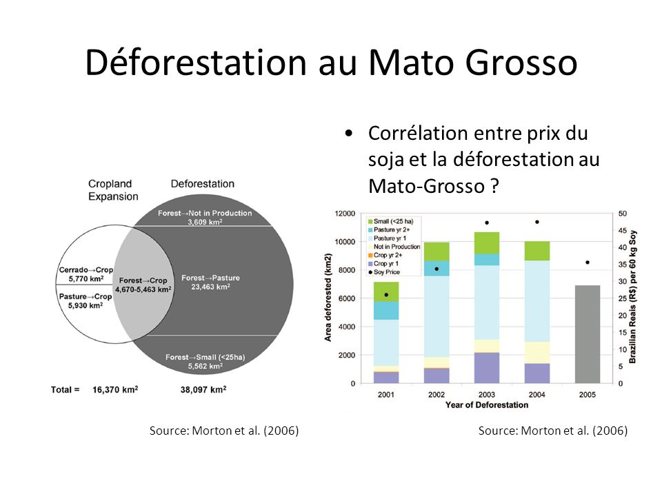 Déforestation au Mato Grosso
