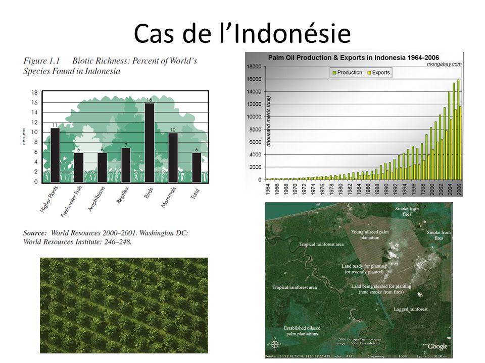 Cas de l'Indonésie