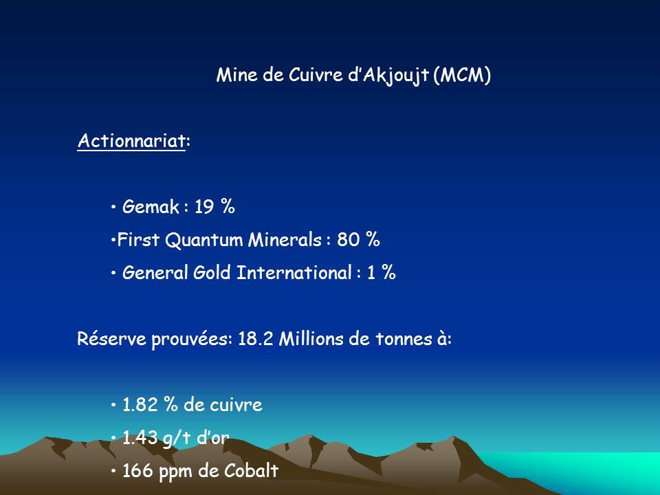 Mine de Cuivre d'Akjoujt (MCM)