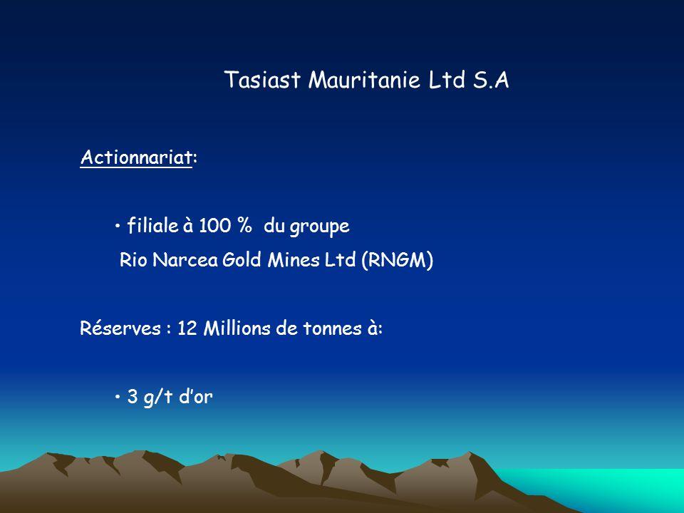 Tasiast Mauritanie Ltd S.A