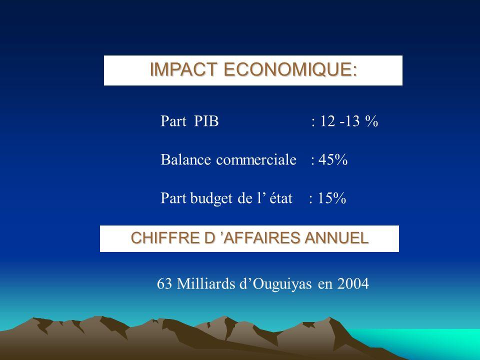 CHIFFRE D 'AFFAIRES ANNUEL