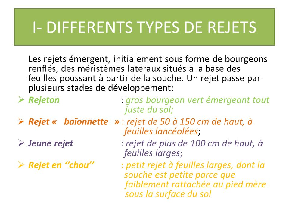I- DIFFERENTS TYPES DE REJETS