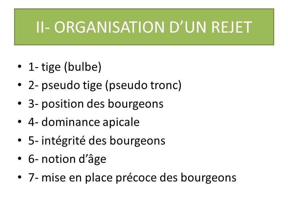 II- ORGANISATION D'UN REJET